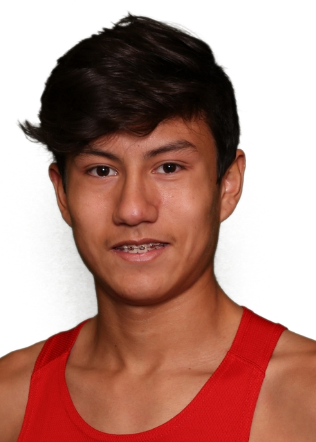 Noah Ayala, Arbor View: The sophomore had seven top-five finishes, including a third-place finish at the Class 4A Sunset Region meet. He was 16th at state in 16:27.0.