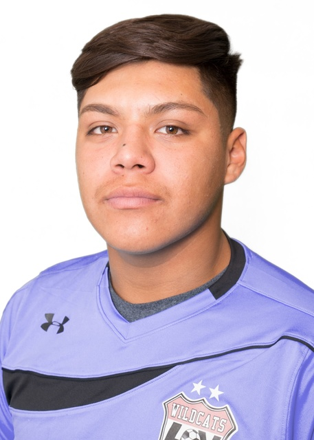 Chris Sosa, Las Vegas: The senior goalkeeper tied for second in Southern Nevada with 10 shutouts and helped give the Wildcats their third league championship in five years.