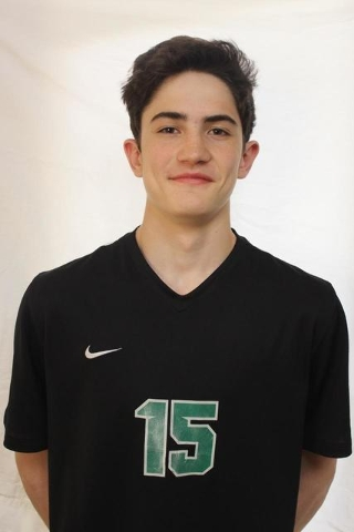 Scott Solan, Palo Verde: The freshman opposite hitter had 242 kills and 55 blocks to lead the Panthers back to the Division I state tournament.