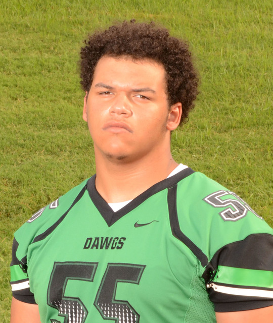 DL Chase Henderson, Virgin Valley (6-3, 295): The senior had 69 tackles and eight sacks. Henderson was the Class 3A Sunrise League Lineman of the year. He also made the Southern Region first team  ...