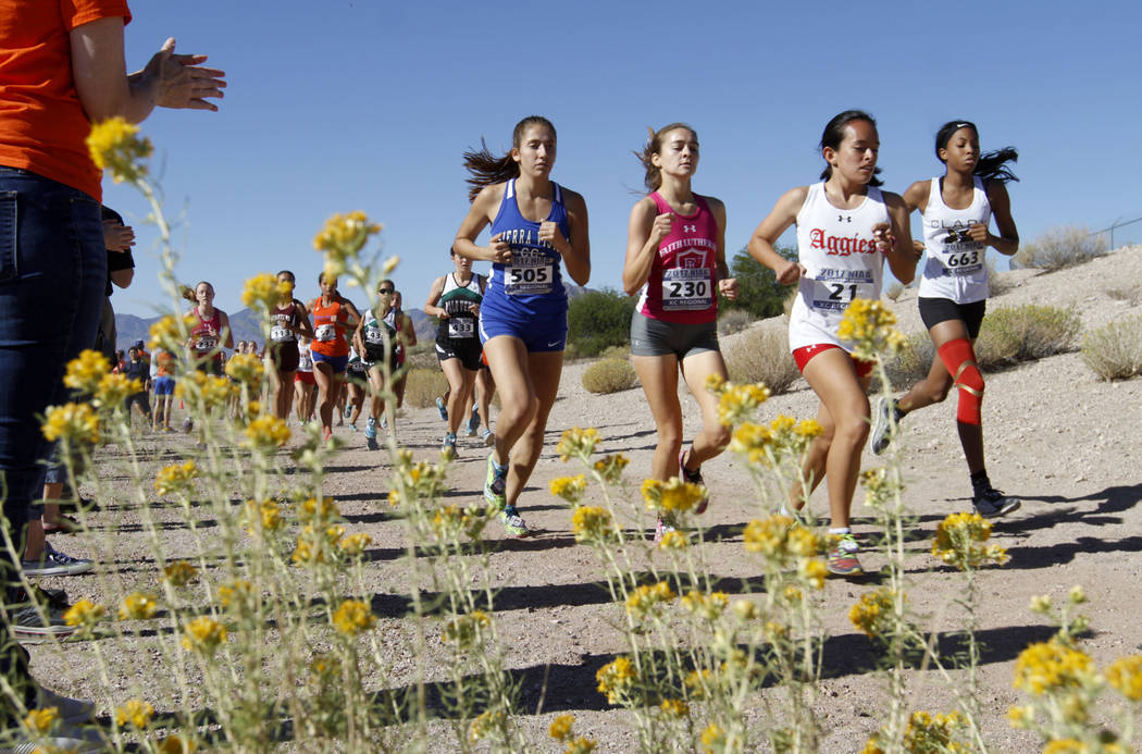 Runners compete during the Girls Cross Country Class 4A Sunset Region race in Boulder City, Friday, Oct. 27, 2017. Chitose Suzuki Las Vegas Review-Journal @chitosephoto
