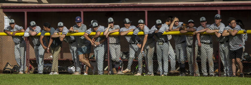 Palo Verde players line the dugout fence while cheering on their batter versus Faith Lutheran d ...