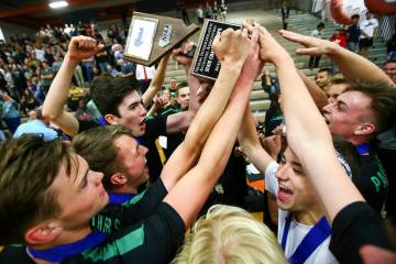 Palo Verde players celebrate their victory over Coronado in the Class 4A state volleyball champ ...